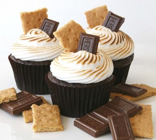 Chocolate S'mores Cupcakes